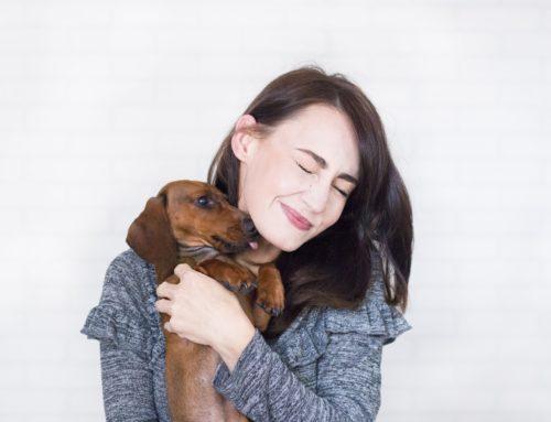 Design Ideas For Your Pet